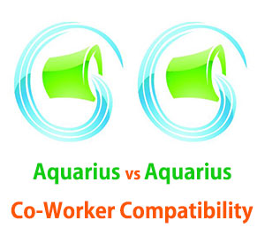 Aquarius and Aquarius Co-Worker Compatibility