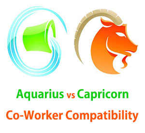 Aquarius and Capricorn Co-Worker Compatibility