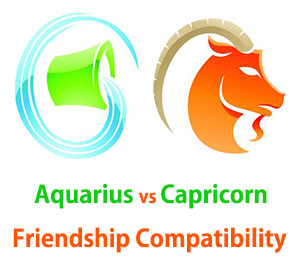 Aquarius and Capricorn Friendship Compatibility