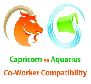 Capricorn and Aquarius Co-Worker Compatibility