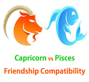 Capricorn and Pisces Friendship Compatibility