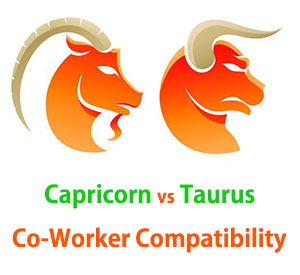 Capricorn and Taurus Co-Worker Compatibility