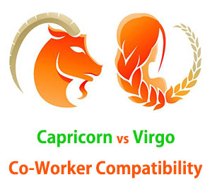 Capricorn and Virgo Co-Worker Compatibility