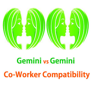 Gemini and Gemini Co-Worker Compatibility