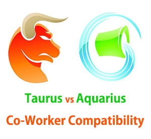 Taurus and Aquarius Co-Worker Compatibility