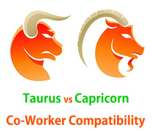 Taurus and Capricorn Co-Worker Compatibility