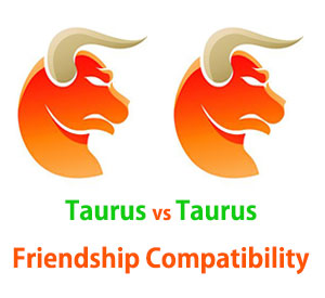 Taurus and Taurus Friendship Compatibility