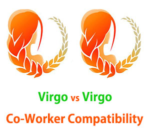 Virgo and Virgo Co-Worker Compatibility